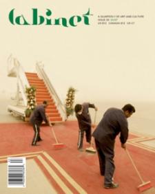 Cabinet Magazine 35