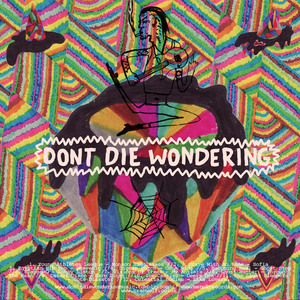 Don't Die Wondering Volume 1